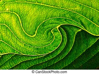 ABSTRACT SHAPES - Green abstract shapes marked by curves and...