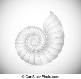 The seashell - Illustration of a sea shell clam. Eps 10