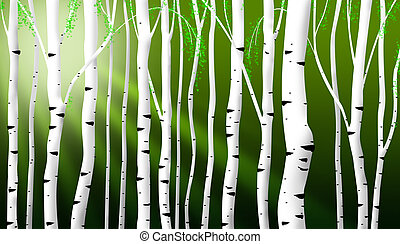 abstract birch stems background - abstract birch stems...