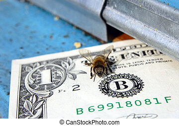 bee making money - bees working hard and making money,...