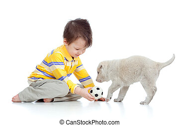 cute child playing with a puppy - adorable boy playing with...