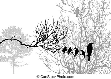 birds silhouette on wood branch,