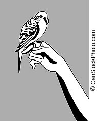 parrot silhouette on gray background,
