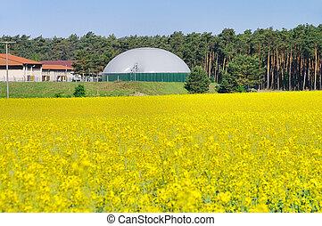 biogas, planta, violación, campo, 03