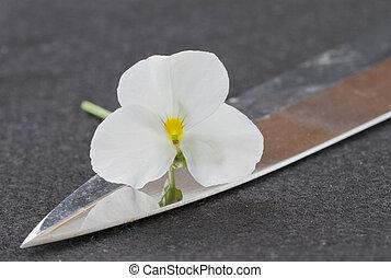 flor, espada