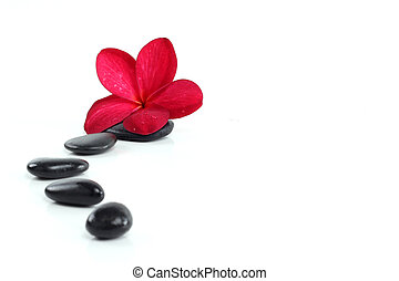 zen stones with red frangipani flower and text space on...