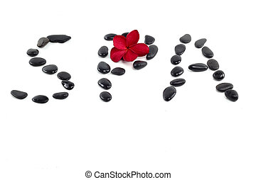 zen stones with red frangipani flower and spa text  on white
