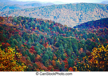 Old Mountains in the Fall - Fall colors dapple the forest of...