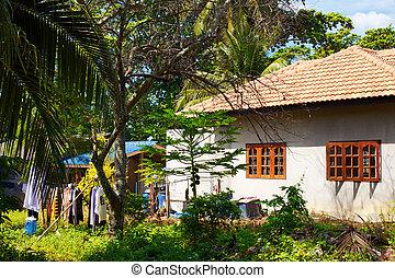 Thai Rural Village