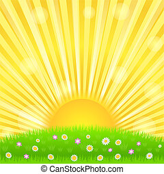Sunburst and green meadow with flowers, vector eps10...
