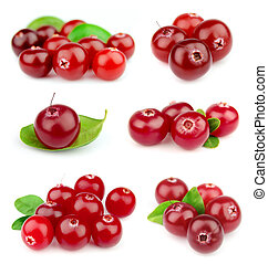 Collage from cranberry on a white background close up