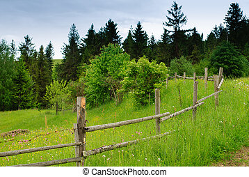 Rural landscape with road and fence - Beautiful blue sky and...