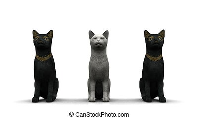 cats - image of cats