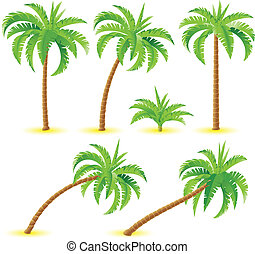 Coconut palms Illustration on white background for design