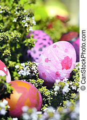 Some decorated easter eggs - Row of Easter Eggs with Daisy...