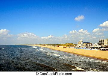 playa, vista