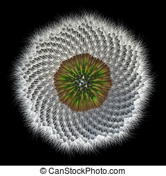 Dandelion Seeds Under View, 3d Generated