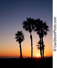 Sunset on beach - The sun sets over the Pacific Ocean with...