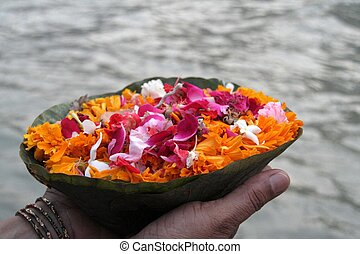 Flower Offering - Offering colourful/colorful flowers to...