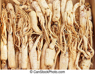 Ginseng - Chinese ginseng, one of the well-known tonic.