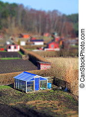 allotment greenhouse - allotment and greenhouse, plot of...