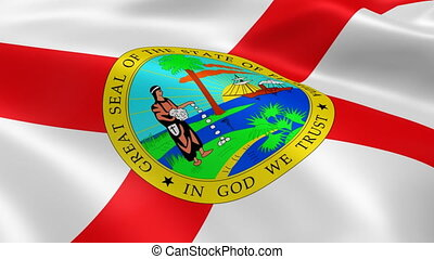 Floridian flag in the wind