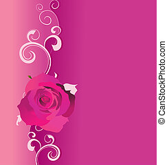 pink vector background with roses and curves for love and wedding, romance illustration