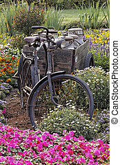 Bicycle with with trailer and churns (milk churn)