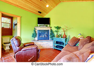 Green living room in a guest pool house.