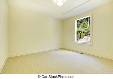 New bedroom interior with one window and carpet.