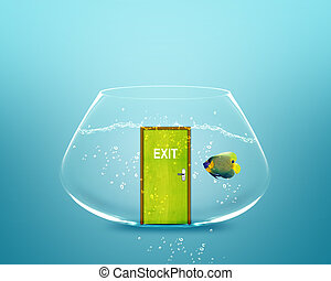 angelfish in small bowl with exit door