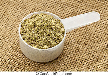 scoop of hemp protein powder