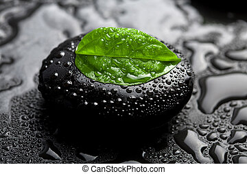 zen stone and leaf with water drops