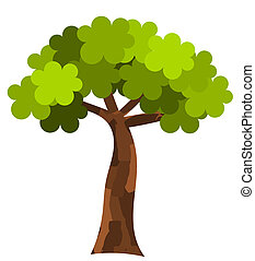 Plane tree. Vector illustration