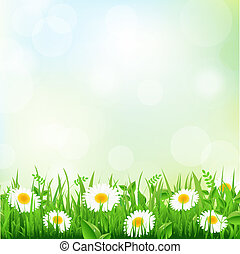 Grass And Daisy - Green Grass Border And Daisy, Vector...