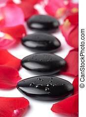 zen stones and rose petals isolated spa background