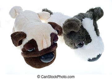 The soft toys - Two soft toys dog sit next on a white...