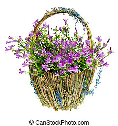 Purple spring flowers in a basket isolated over white...