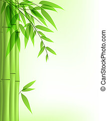 green bamboo - Vector background with green bamboo