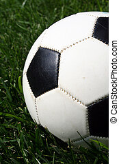 Soccerball - A soccerball sits on a field