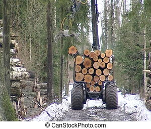unload logs trailer - special forest tree logs transporting...