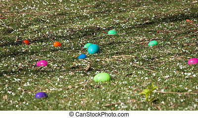 Easter Egg Hunt - Easter egg hunt in urban park.