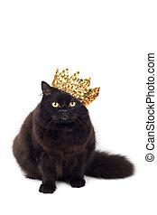 noir, chat, Porter, Doré, couronne, isolé