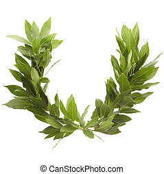 Laurel wreath isolated on white, clipping path included