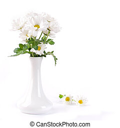 White flowers, field camomiles in a vase on a white...