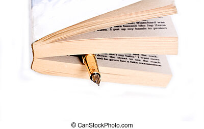 Pen and ancient poetry book - Pen and closed the book art...