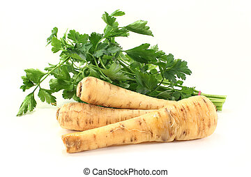 parsnips - Parsnip and parsley on a white background