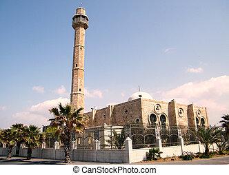 Tel Aviv Hasan-bey Mosque 2010 - Hasan-bey Mosque in Tel...