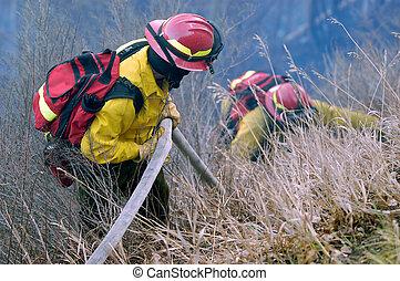 Firefighter teamwork - a team of firefighters battle a grass...