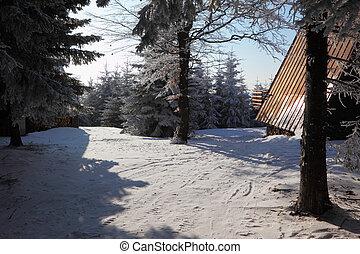 Snowy cozy ski hotel